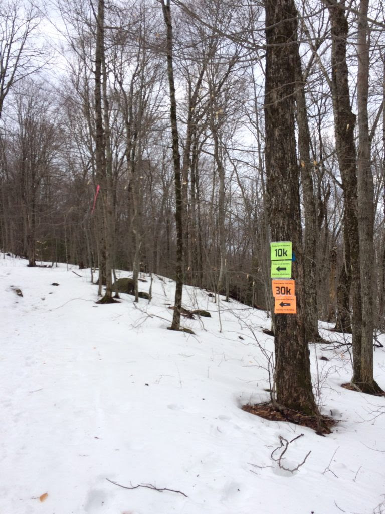 Markers on tree on the Snowshoe Race trail